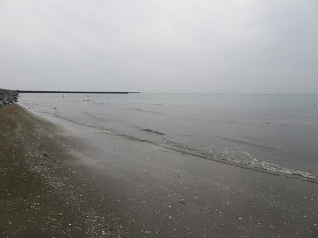 幕張海岸 海その848 IMG_2947