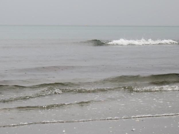 幕張海岸 海その849 IMG_2941