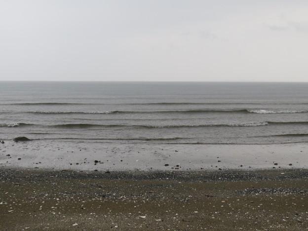幕張海岸 海その851 IMG_2913
