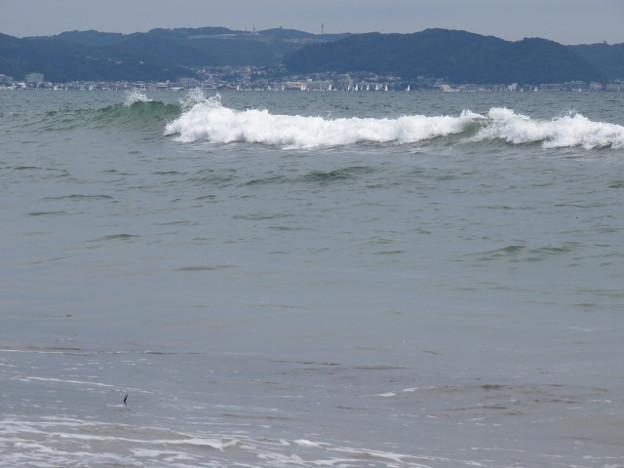 七里ヶ浜 海その860 IMG_3289