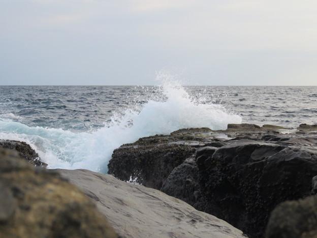 Photos: 江の島 海その869 IMG_3529
