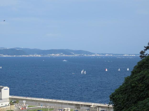 Photos: 江の島 海その934 IMG_3421