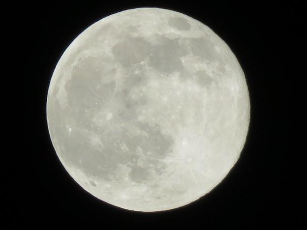 満月(スノームーン) IMG_5459