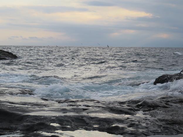 江の島 海その946 IMG_3585