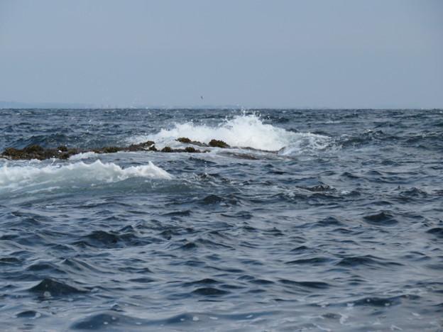 江の島 海その955 IMG_3491