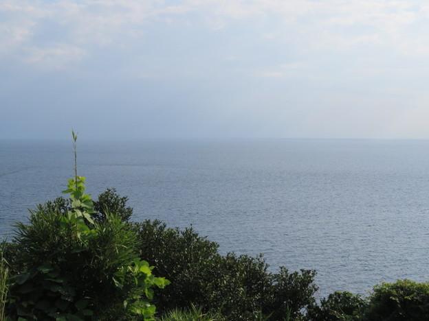 Photos: 江の島 海その973 IMG_3431