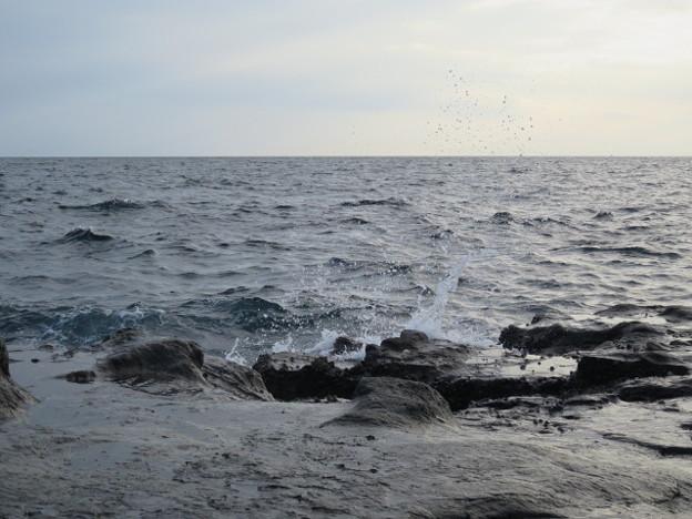 江の島 海その985 IMG_3558