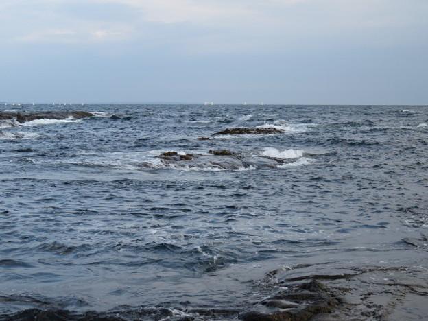 江の島 海その992 IMG_3480