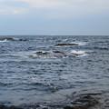 Photos: 江の島 海その992 IMG_3480