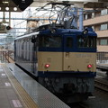 Photos: EF64形電気機関車 RIMG6520