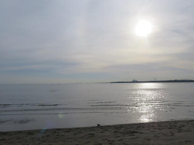 葛西臨海公園 海その997 IMG_4062