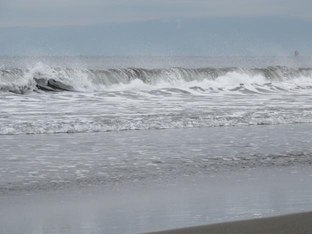 鵠沼海岸 海その1037 IMG_4329