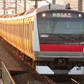 Photos: 京葉線 快速君津行 IMG_0267