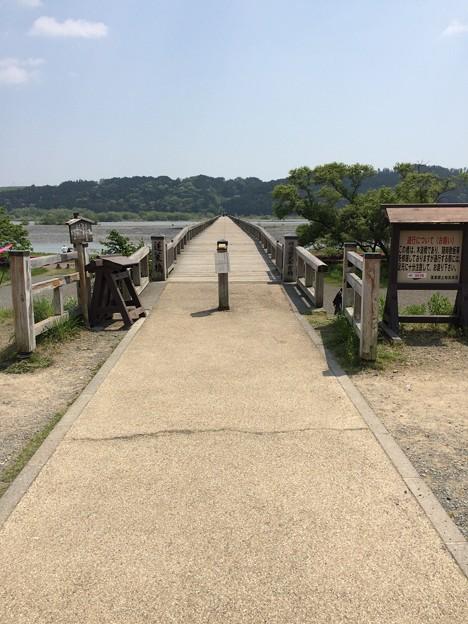 蓬莱橋北側から撮影