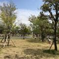 Photos: 朝霧高原