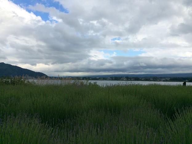 河口湖北畔からの眺め
