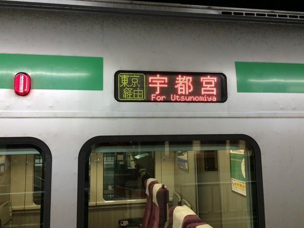 上野東京ライン 宇都宮行き