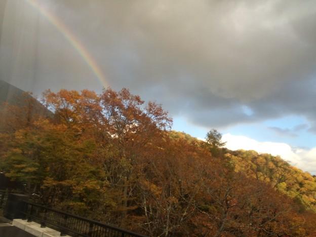 紅葉と虹1