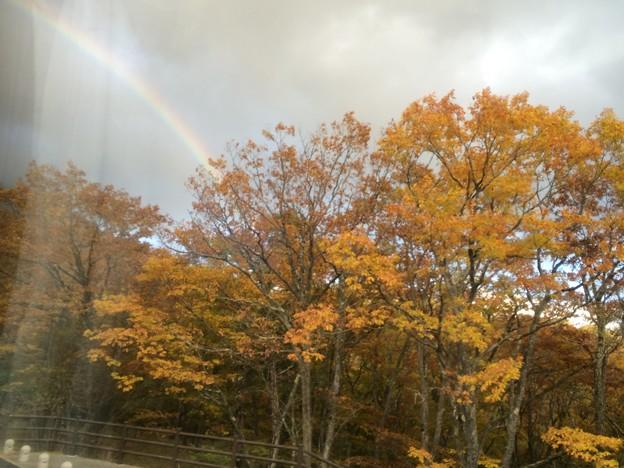 紅葉と虹2