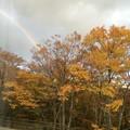 Photos: 紅葉と虹2