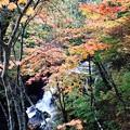 Photos: 竜頭の滝4