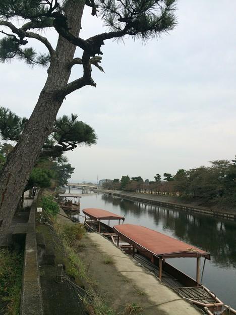 Photos: 宇治川のほとり1