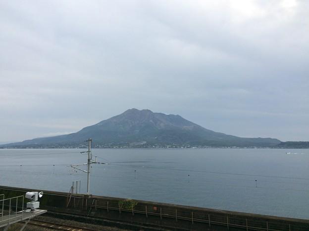 仙巌園から見た桜島2