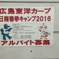 Photos: 広島東洋カープキャンプ地