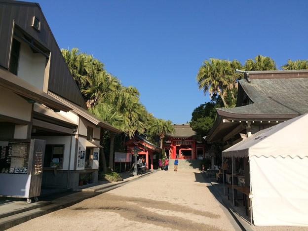 青島神社3