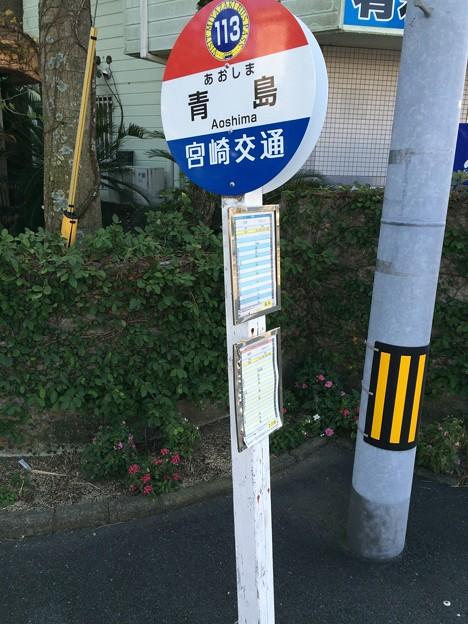 青島バス停