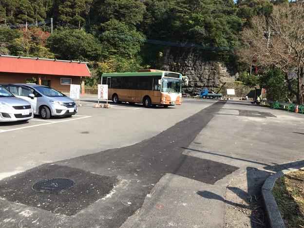 変わった塗装?のバス