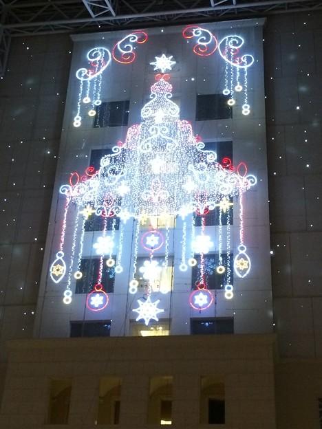 シーガイア クリスマス4
