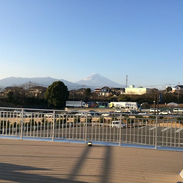 伊豆フルーツパークから見える富士山1