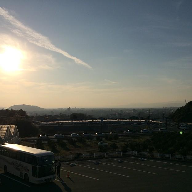 伊豆フルーツパークから見える駿河湾と街