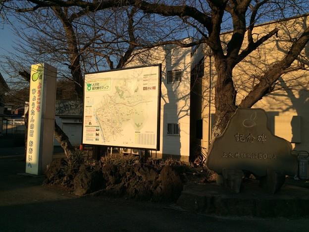 上大井駅2