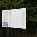 Photos: 東レ鎮守の森