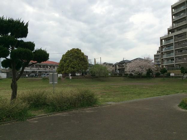 Photos: 上岩崎公園2
