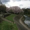 Photos: 上岩崎公園7