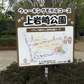 Photos: 上岩崎公園8