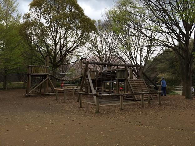 上岩崎公園11 アスレチック