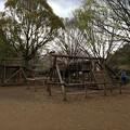 Photos: 上岩崎公園11 アスレチック