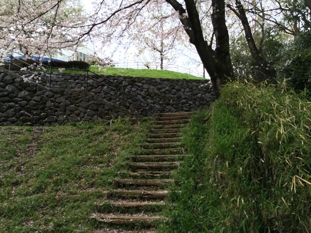 上岩崎公園14