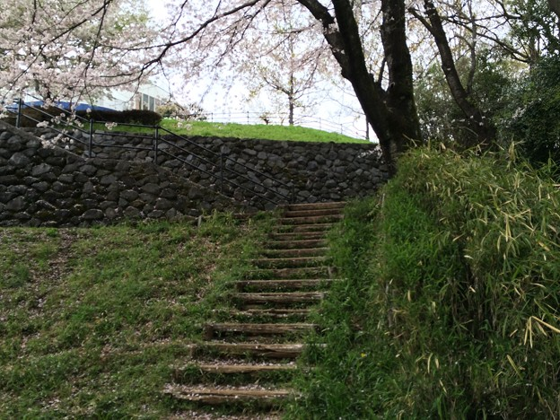 Photos: 上岩崎公園14
