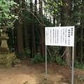 Photos: 茶臼山