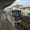 Photos: 久々に静岡鉄道に乗車した