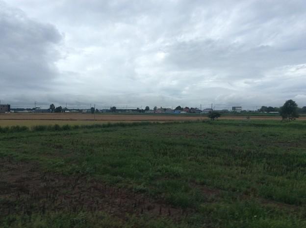 石狩平野の田園風景1