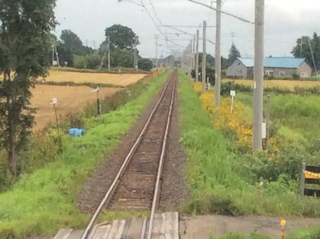 北海道医療大学からの鉄路