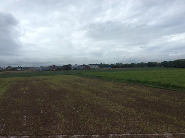 石狩平野の田園風景2
