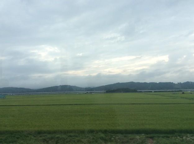 津軽の田んぼと北海道新幹線
