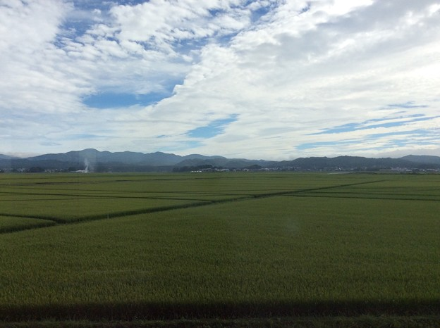 津軽平野12